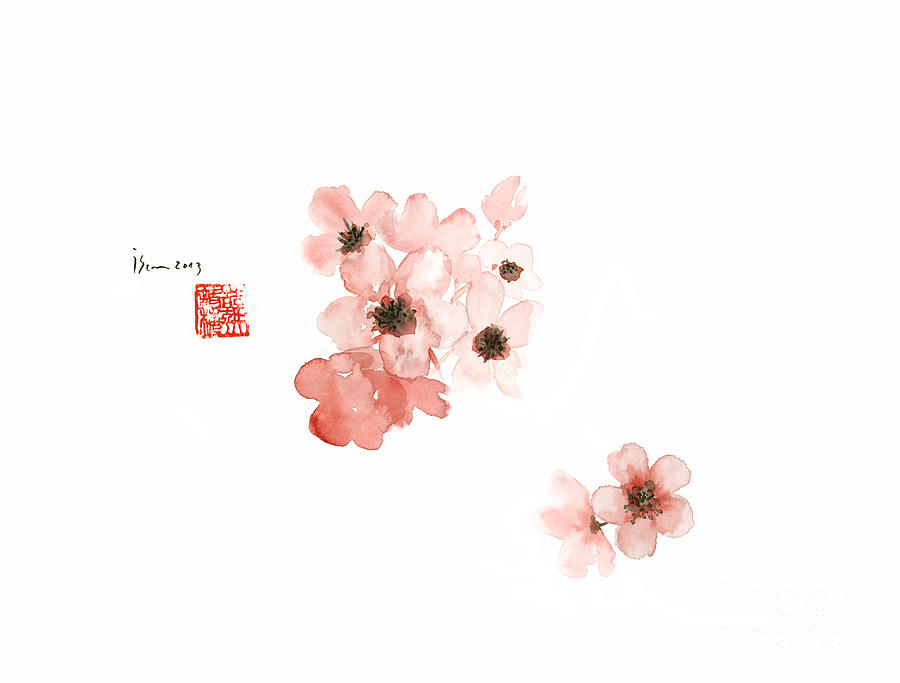 900x683 Cherry Blossom Sakura Pink Flower Flowers Delicate Branch Brown
