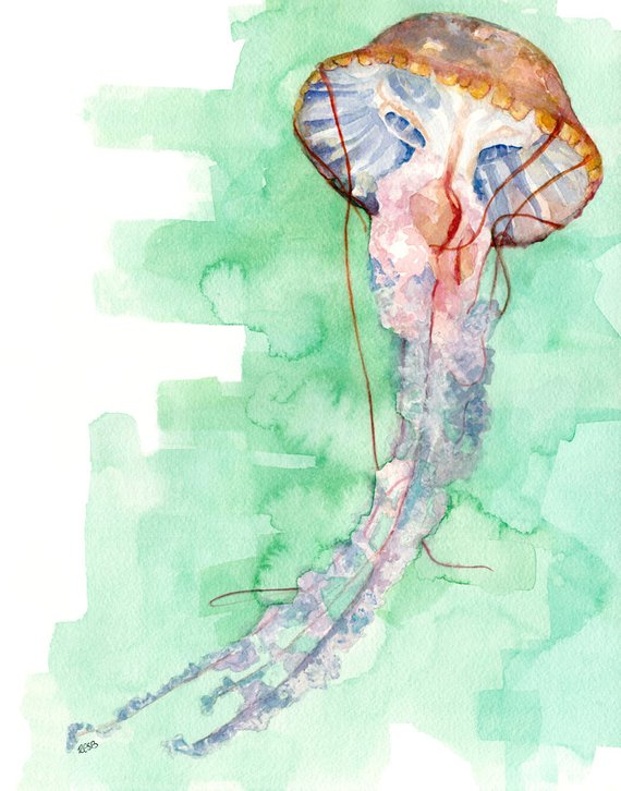 570x726 Jellyfish Painting Print From Original Watercolor Painting Etsy