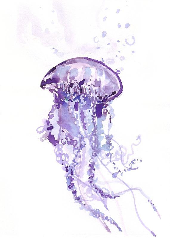570x796 Jellyfish Painting Watercolor Illustration By Ioana Avram