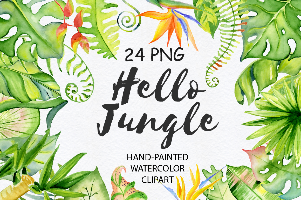 1160x772 Tropical Leaves Watercolor Jungle Clipart By Evgeniiasart