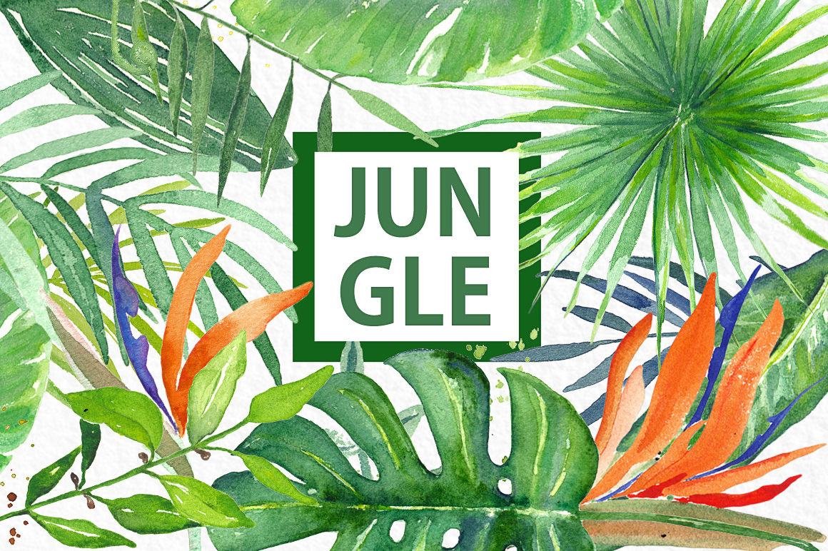 1160x772 Tropical Leaves. Jungle. Watercolor Clipart. By Labfcreations