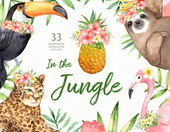 570x443 In The Jungle Watercolor Clipart Woodland Animals Kids Etsy