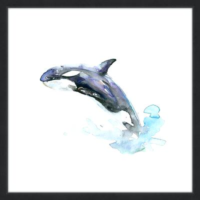 400x400 Killer Whale By Framed Painting Print Watercolor Art Daisy Seal