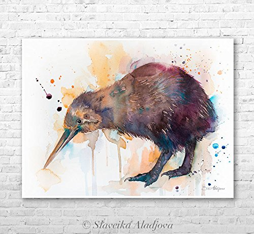 500x460 Kiwi Watercolor Painting Print By Slaveika Aladjova Amazon.co.uk