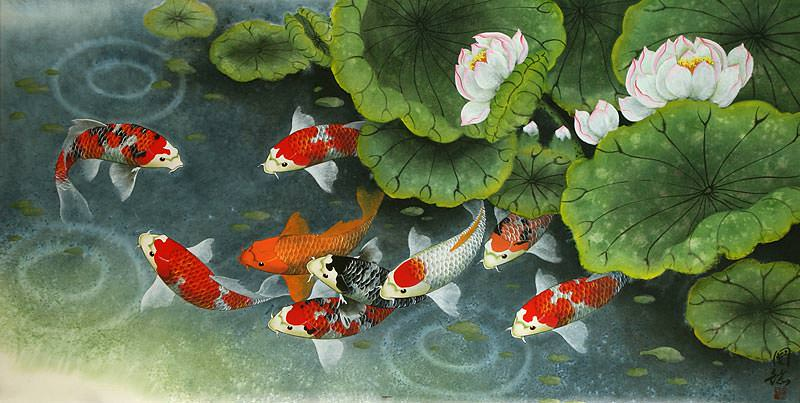 800x403 Koi Fish And Lillies Feeding Time Painting