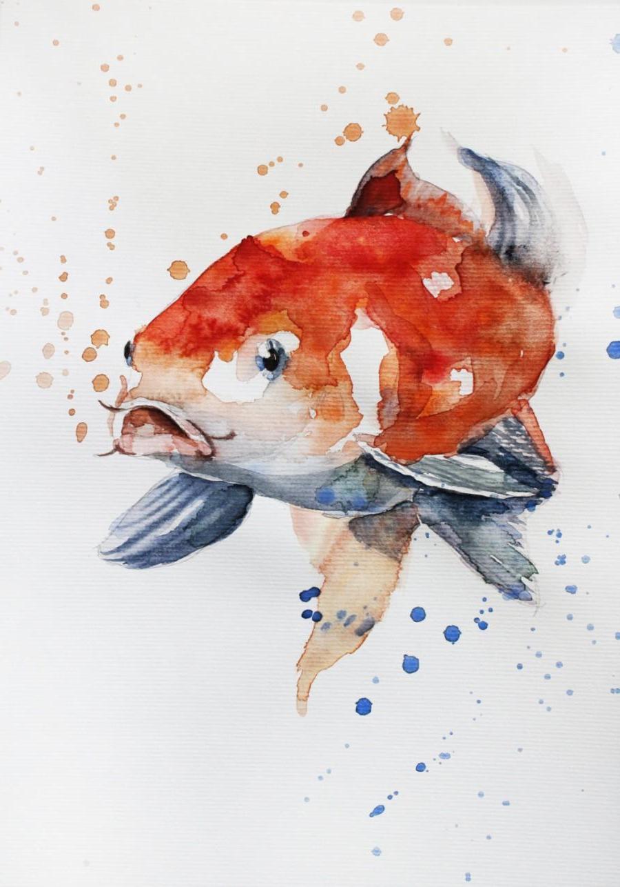 900x1286 Watercolor Paintings Of Fish Watercolor Paintings Of Fish Original