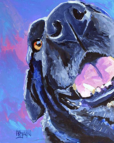 400x500 Black Labrador Retriever Dog Fine Art Print On 100