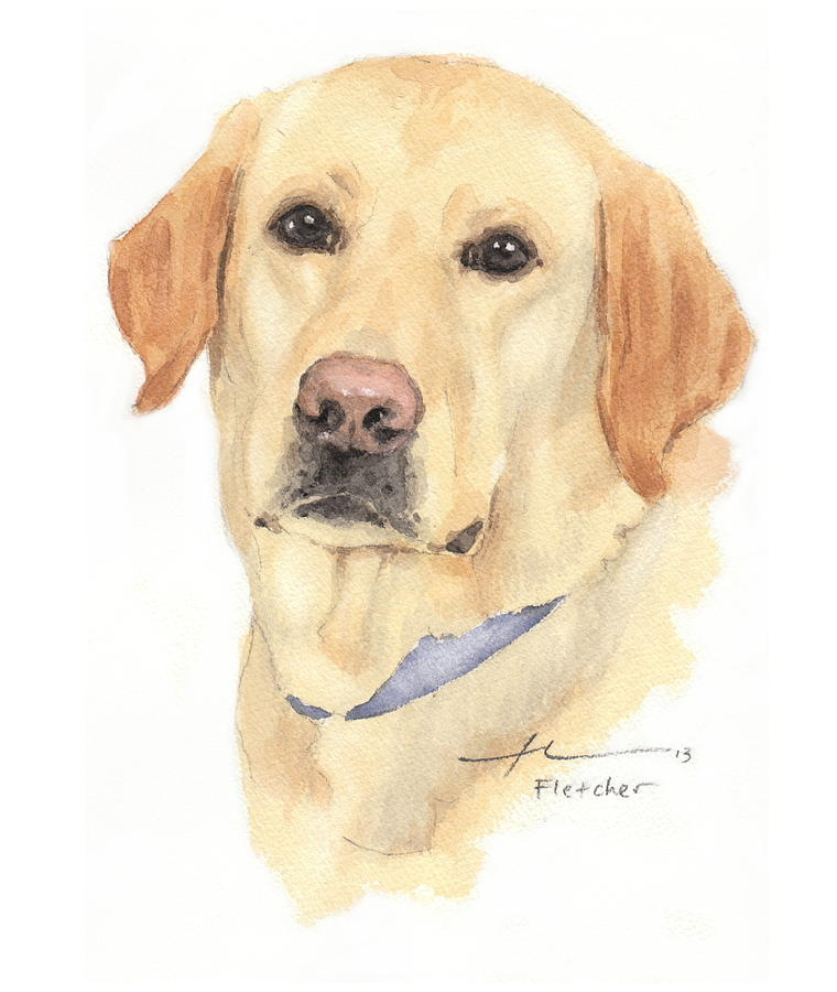 760x900 Labrador Dog Watercolor Portrait Painting By Mike Theuer
