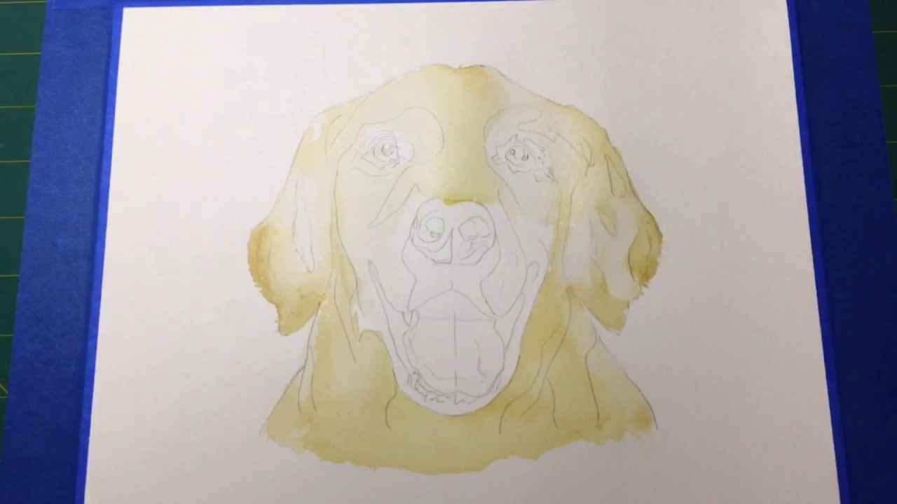 1280x720 Labrador Retriever Portrait Speed Watercolor Painting