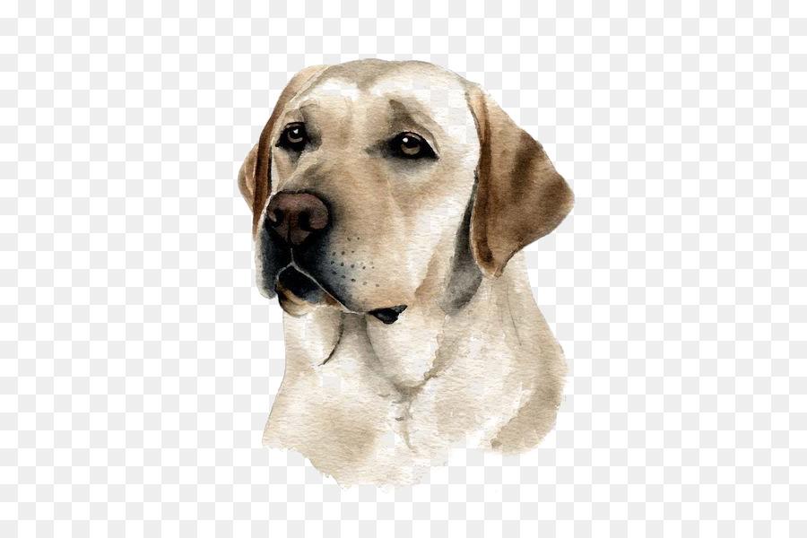 900x600 Labrador Retriever Puppy Purebred Dog Watercolor Painting