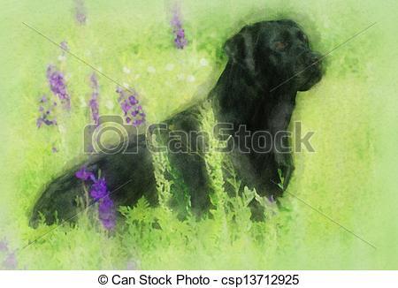 450x326 Watercolor Painting Portrait Of Black Labrador. Watercolor