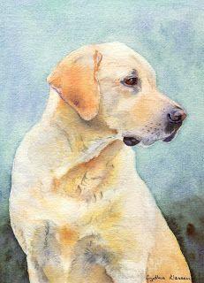 231x320 Watercolor Portrait Of A Yellow Labrador Retriever By Cynthia
