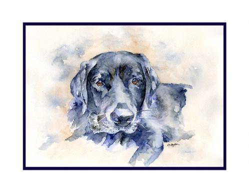 498x384 Black Labrador Watercolor Note Cards