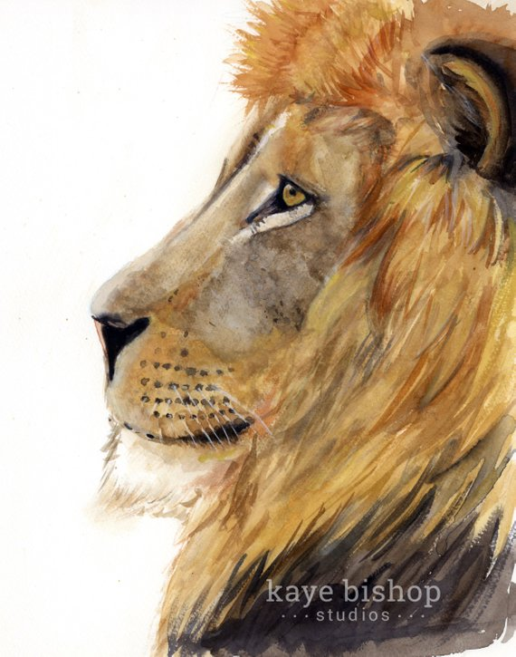 570x725 Lion Watercolor Painting Animal Art Lion Painting Lion Etsy