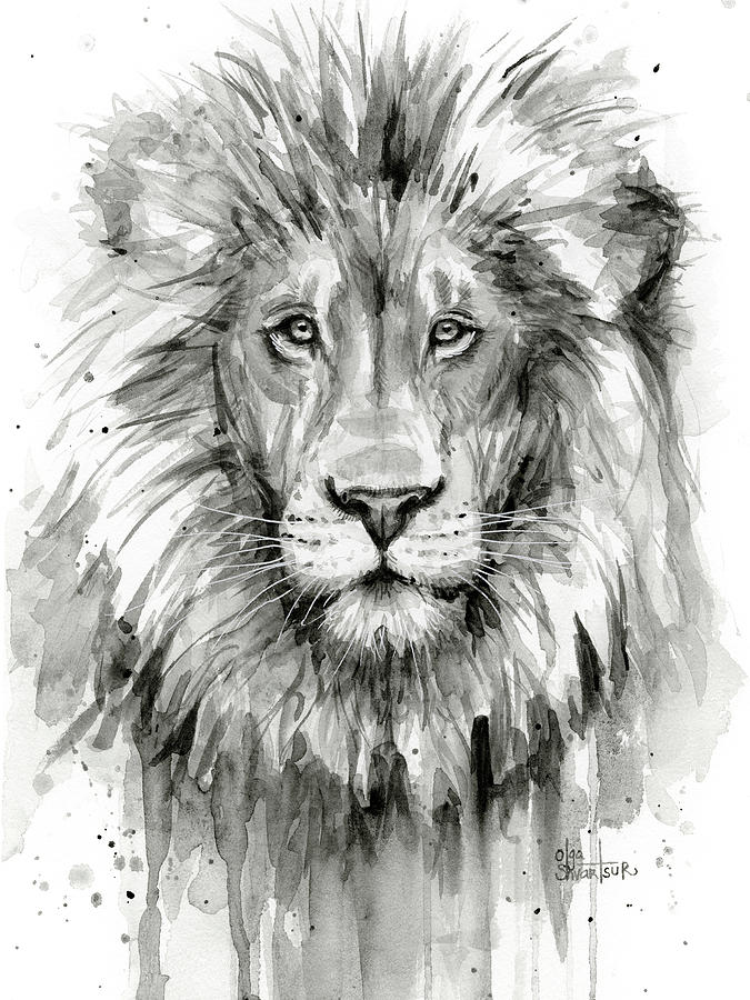 675x900 Lion Watercolor Painting By Olga Shvartsur