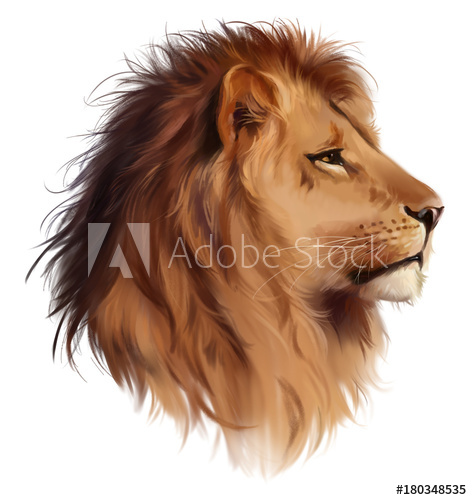 472x500 The Head Of A Lion Watercolor Painting