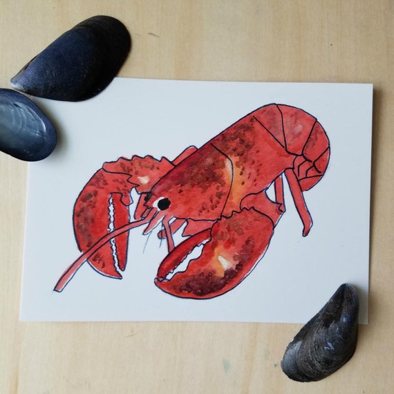 570x570 Lobster Watercolor Postcard Five Pack Nautical Stationery Set Etsy