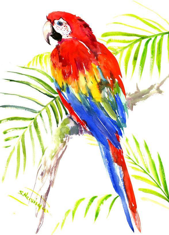 588x820 Scarlet Macaw, Original Watercolor Painting Bright Tropical Bird