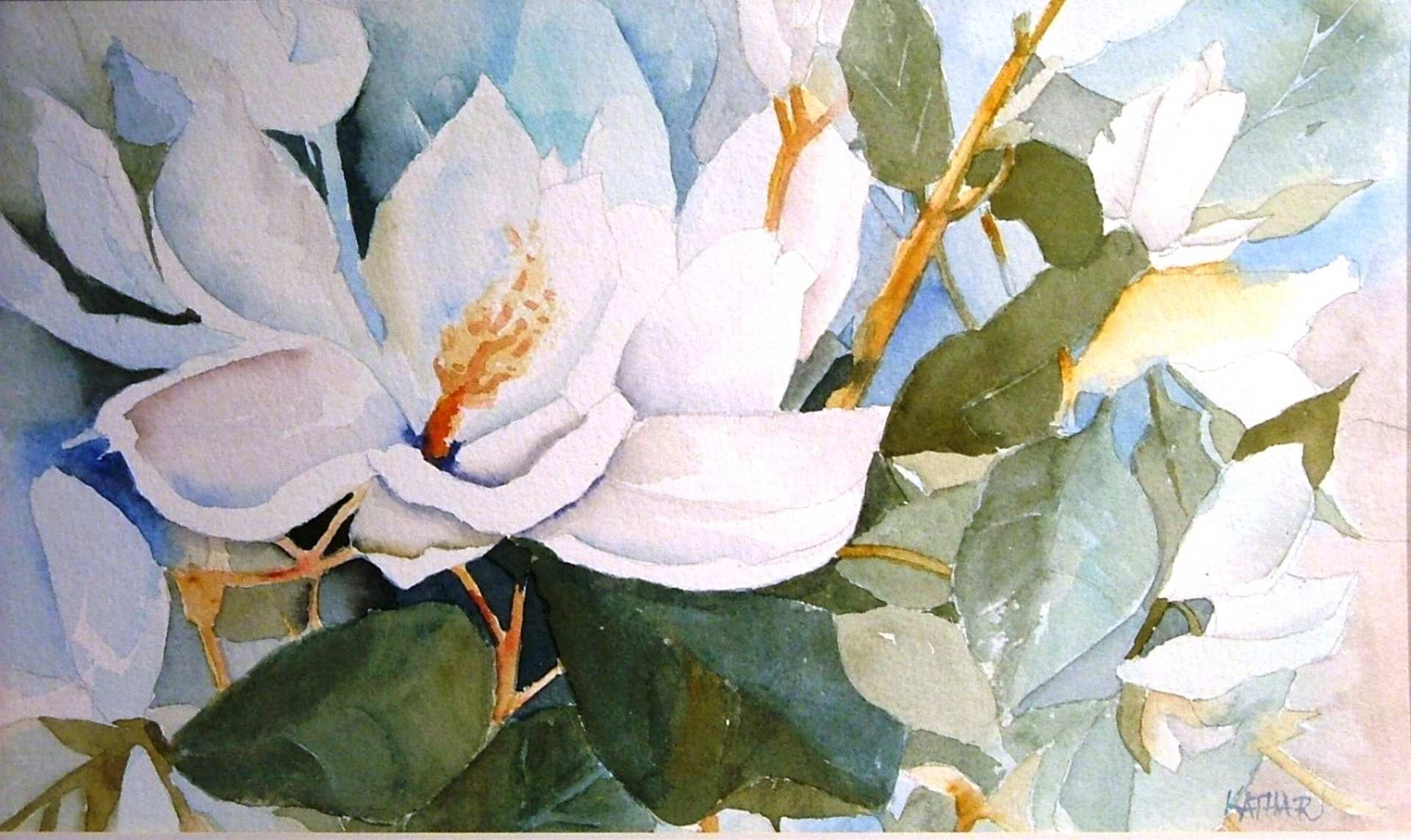Magnolia Watercolor At Getdrawings Com Free For Personal Use