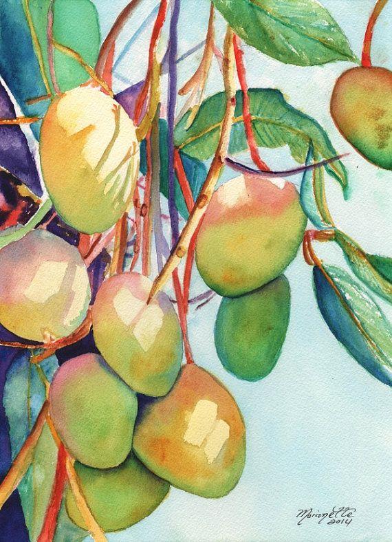 570x788 Mangoes Watercolor Painting Original From Kauai Hawaii Tropical