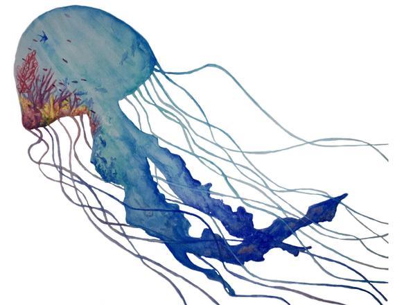 570x440 Jellyfish Reef Watercolor Jellyfish Watercolor Marine Life Etsy