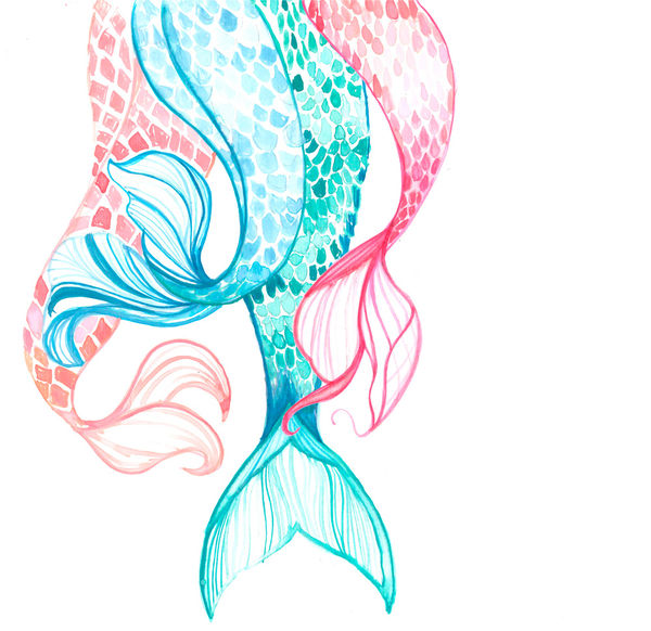 600x582 Mermaid Tails By Coral Hernandez Finol Decalgirl