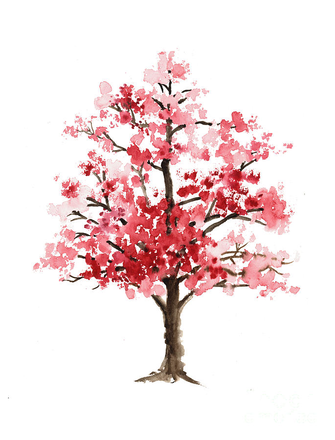 685x900 Cherry Blossom Tree Minimalist Watercolor Painting Painting By