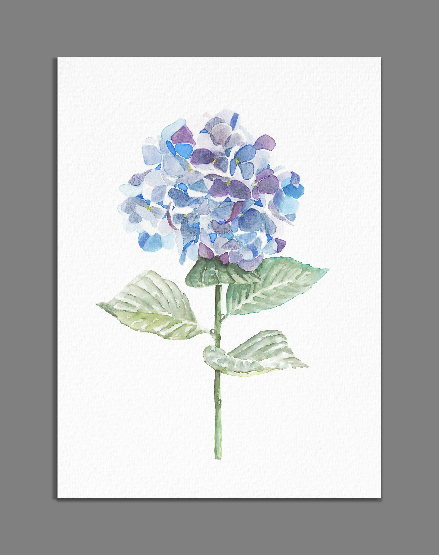 2375x3000 Hydrangea Painting Minimalist Watercolor Flower Print