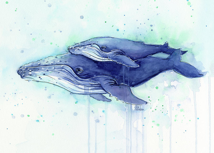 900x642 Humpback Whale Mom And Baby Watercolor Painting By Olga Shvartsur