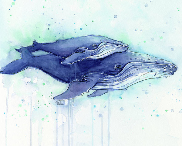 600x480 Humpback Whales Mom And Baby Watercolor Painting