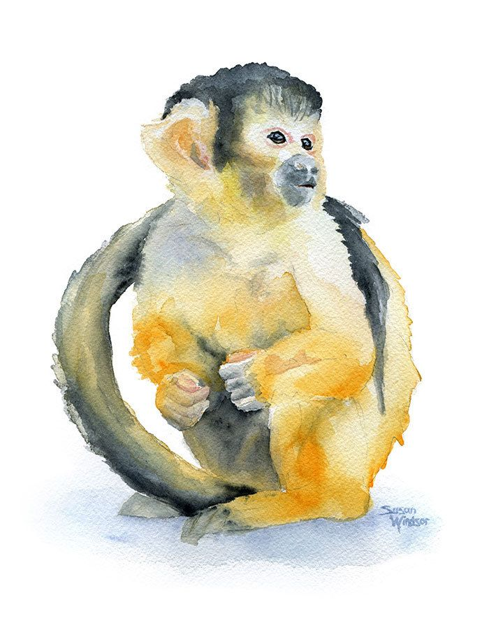 700x891 Monkey Watercolor Painting