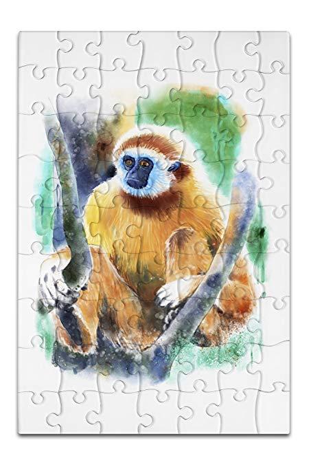 453x679 White Handed Gibbon Monkey