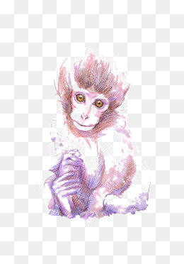 260x372 Watercolor Monkeys Png Images Vectors And Psd Files Free