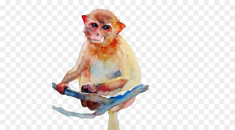 900x500 Cercopithecidae Watercolor Painting Monkey
