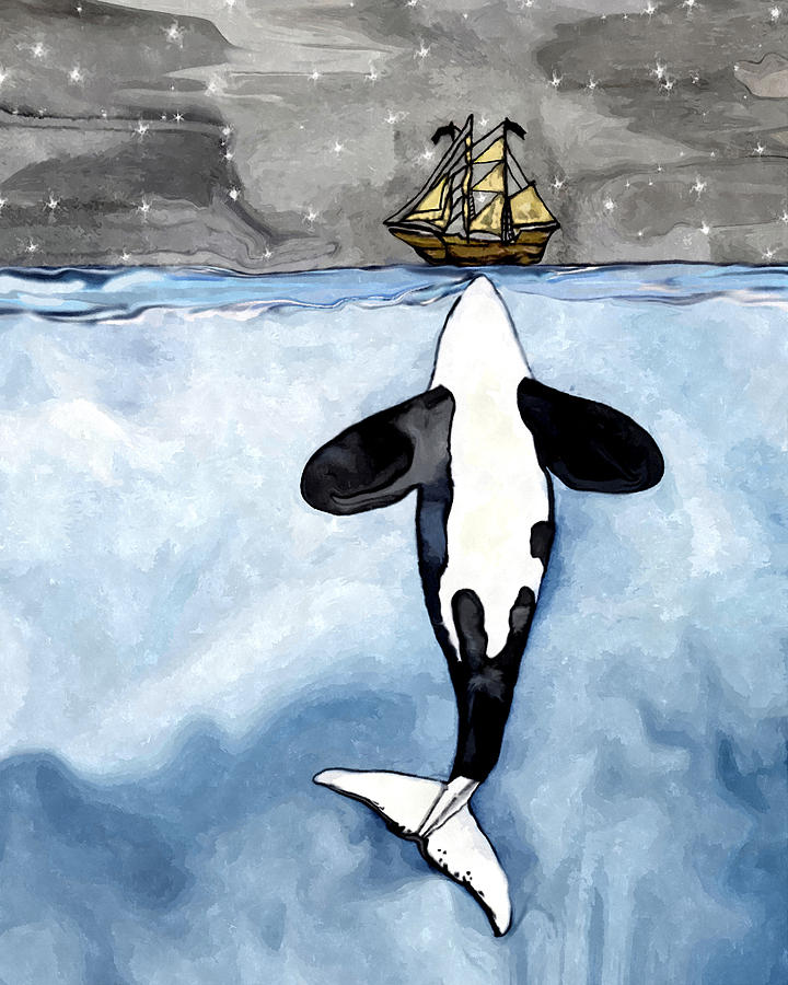 720x900 Whale Orca Kisses A Boat Drawing By Midex Planet