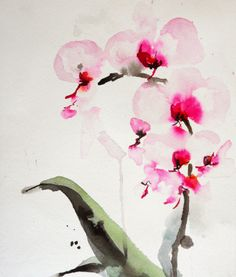 Orchid Paintings Watercolor