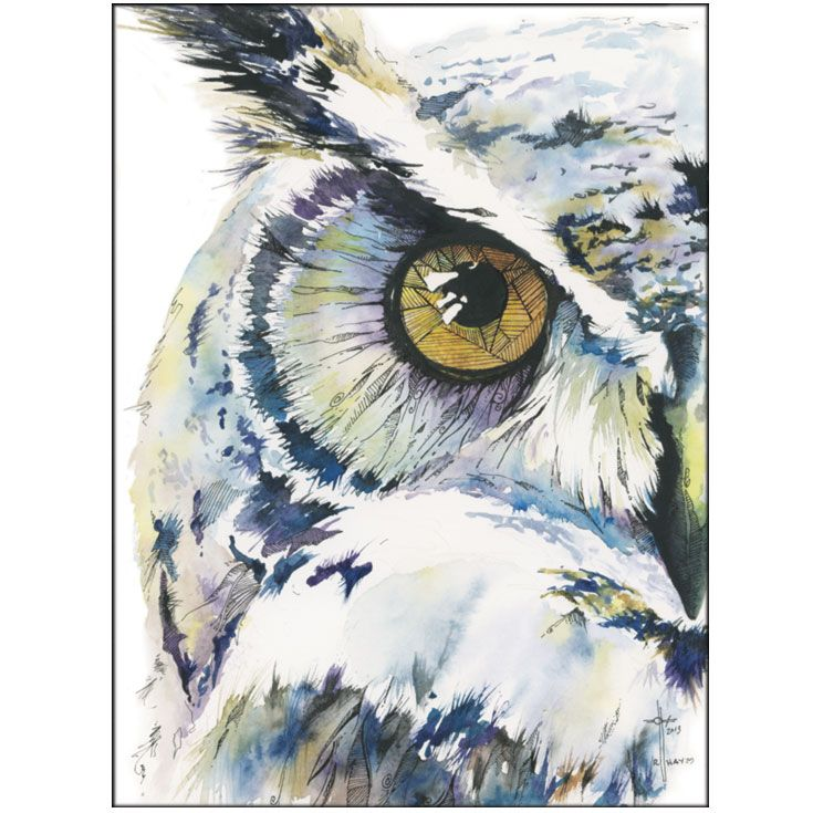 735x735 Wise Whimsical Owl Watercolor And Ink Owls Owl