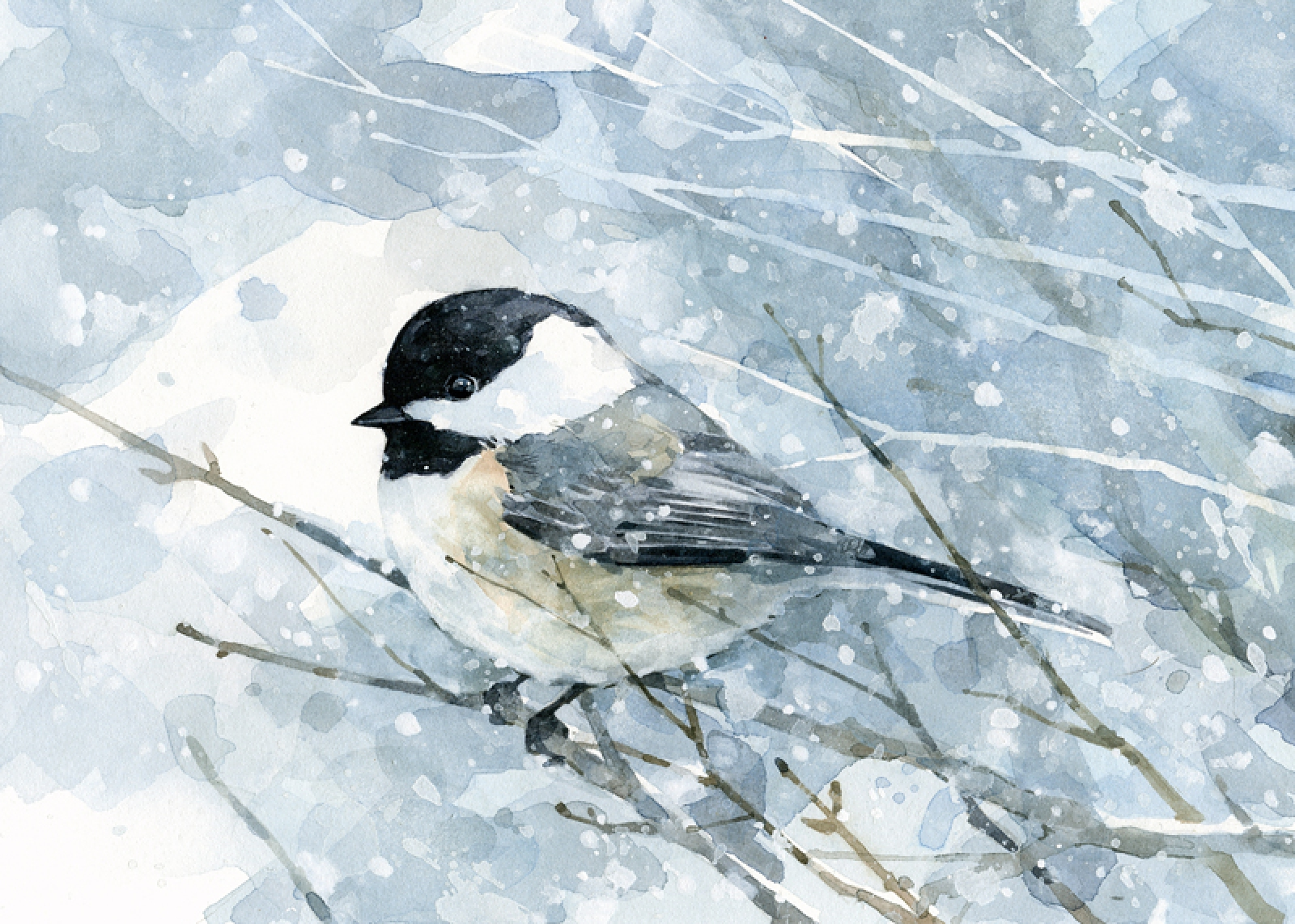 1600x1142 Chickadee In Snow Watercolor Painting, Archival Art Print David