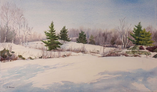 500x295 Featured Paintings By Debbie Homewood, Canadian Watercolor Artist
