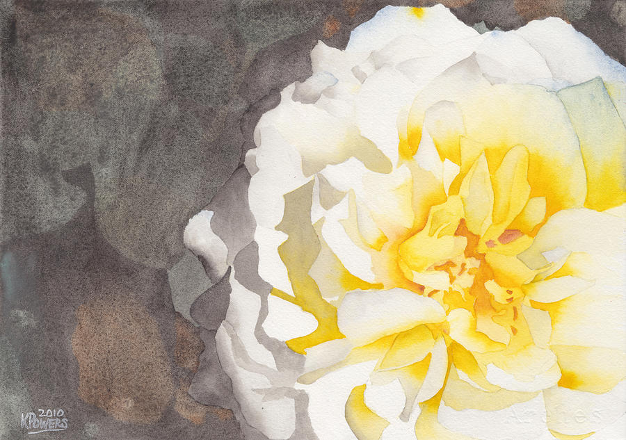 900x633 Point Defiance White Flower Painting By Ken Powers