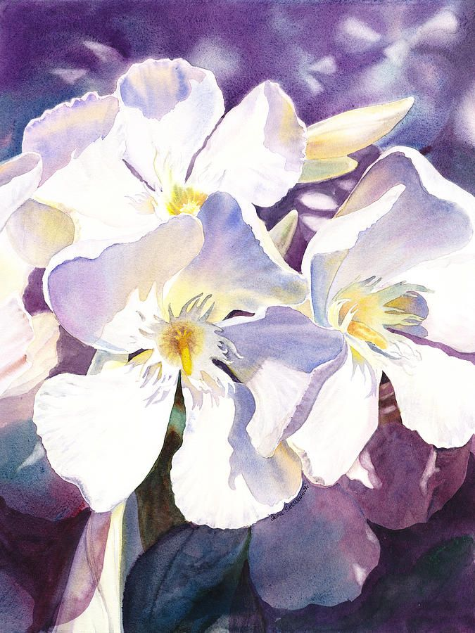 675x900 White Oleander Painting
