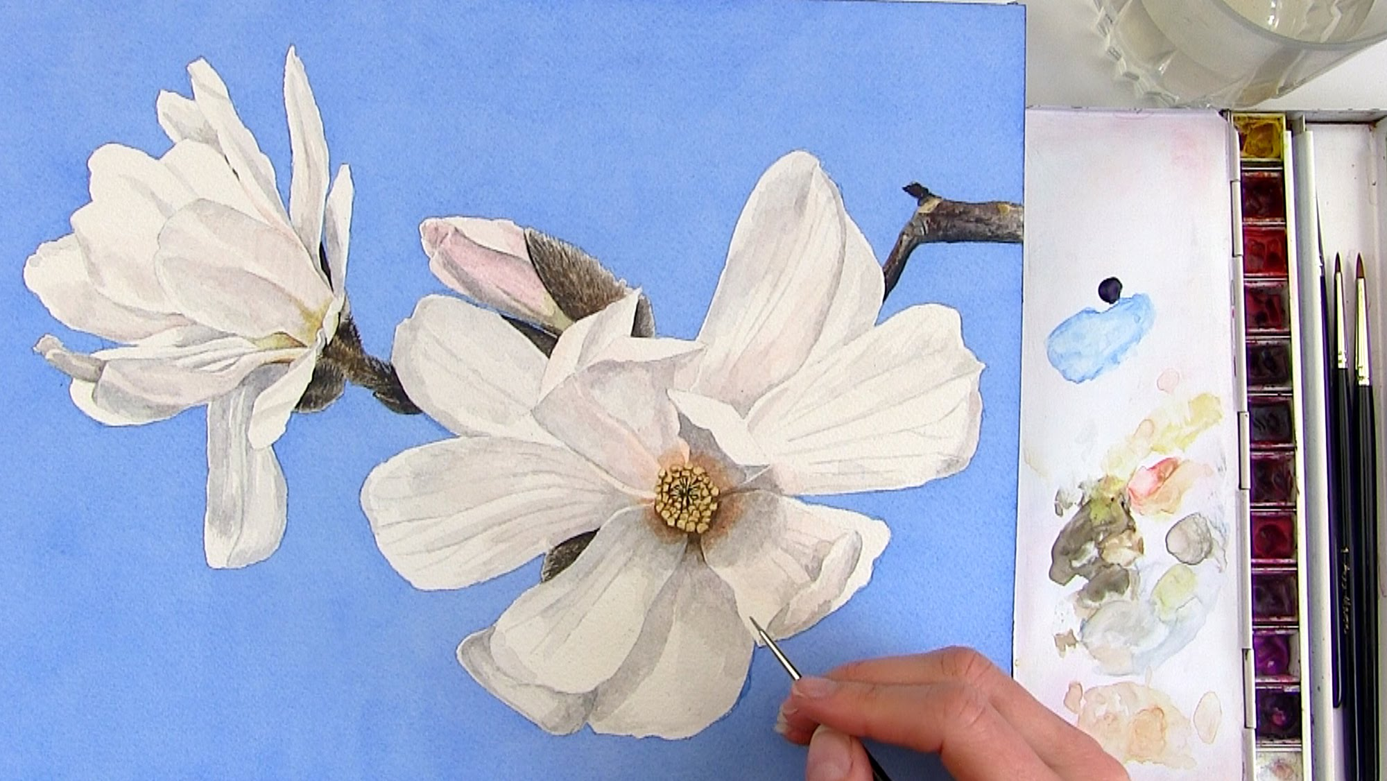 2000x1126 How To Paint A Realistic White Magnolia Flower In Watercolor
