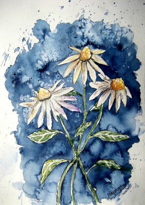 Paintings Of Daisies In Watercolor