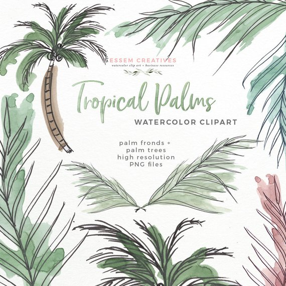 570x570 Tropical Palm Leaves Watercolor Clipart Tropical Greenery Etsy