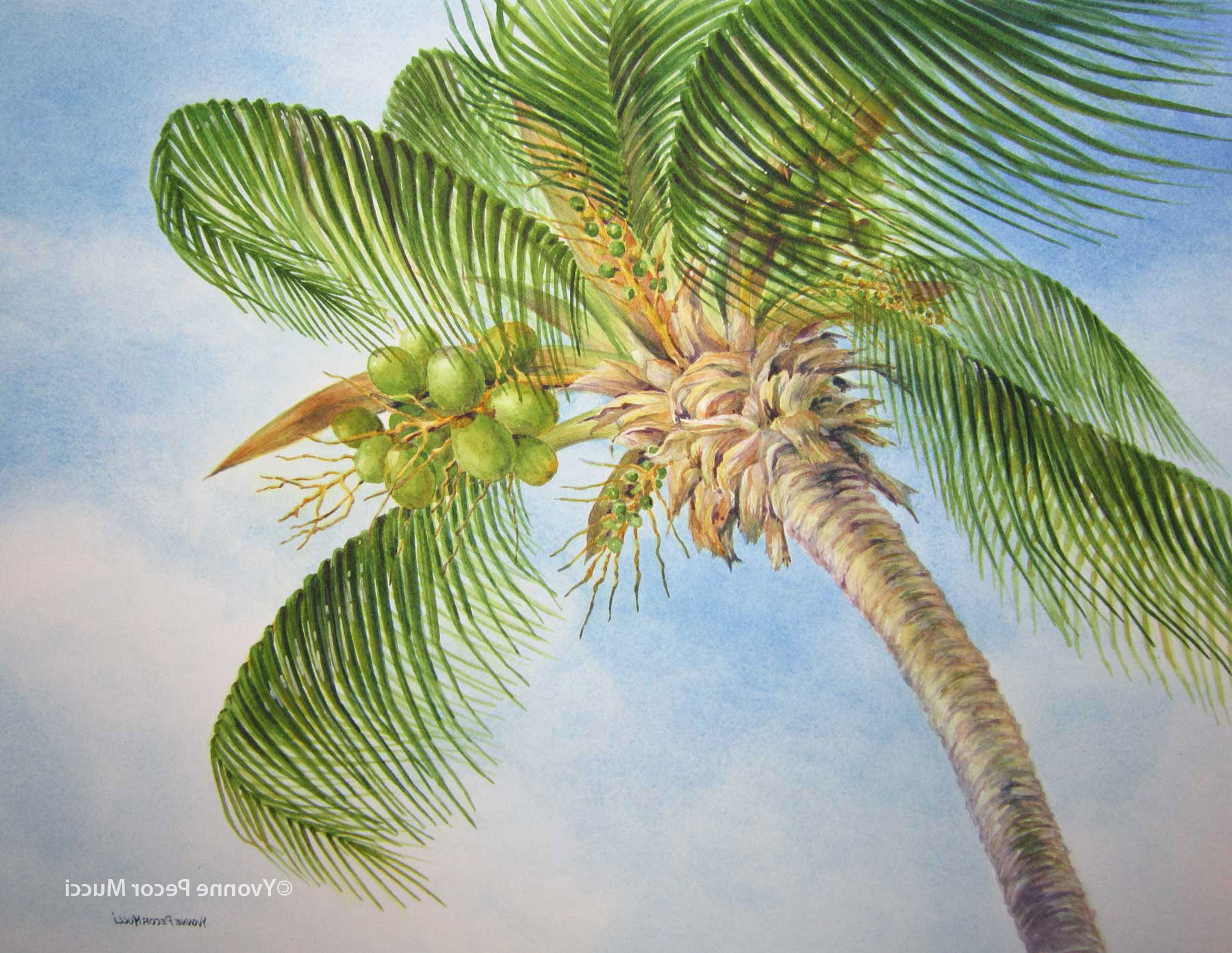 1800x1393 Painting Palm Trees In Watercolor Painting Trees With Watercolor