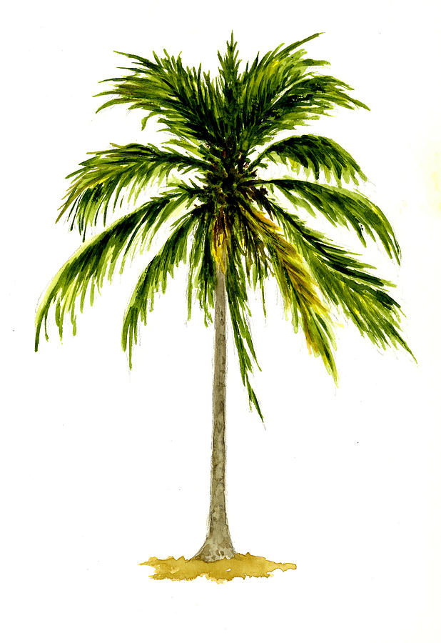 618x900 Palm Tree Number 2 Painting By Michael Vigliotti