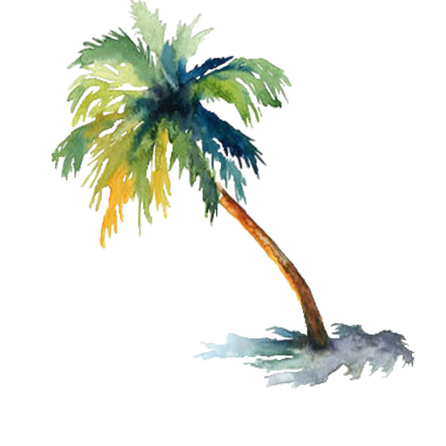 900x900 Watercolor Painting Arecaceae Drawing Tree
