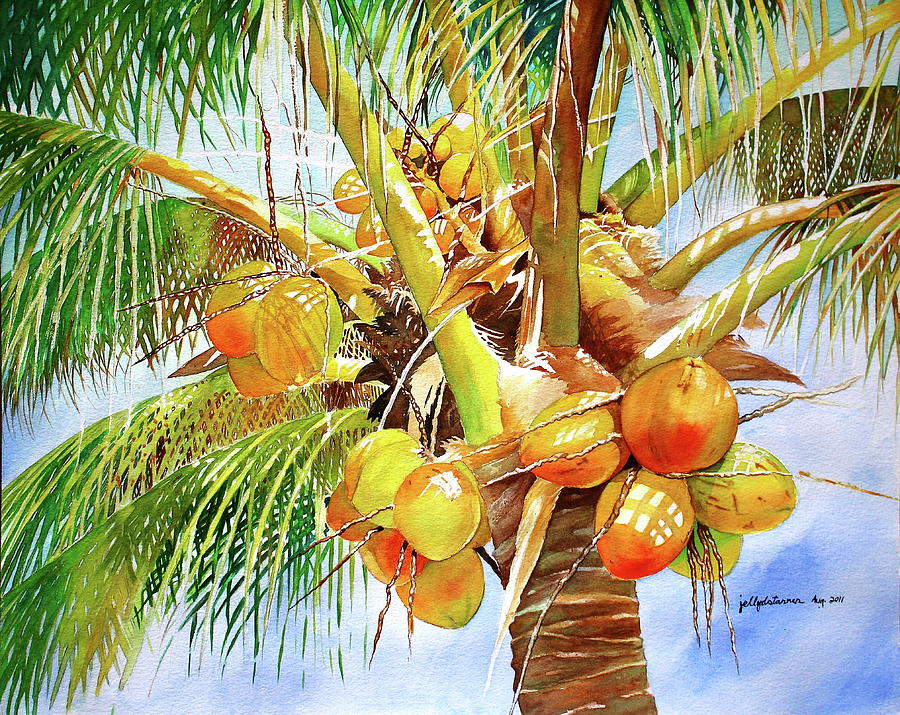 900x715 Coconut Tree Painting By Jelly Starnes