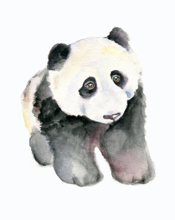 Panda Watercolor
