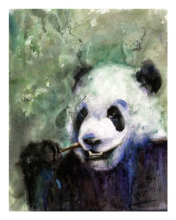 570x714 Panda Watercolor Painting Panda Art Print Giant Panda Bear Etsy
